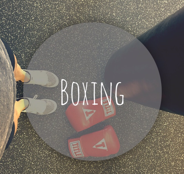 EverFit boxing